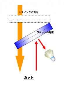 ラケット面_カット